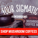 Mushroom Coffee Review